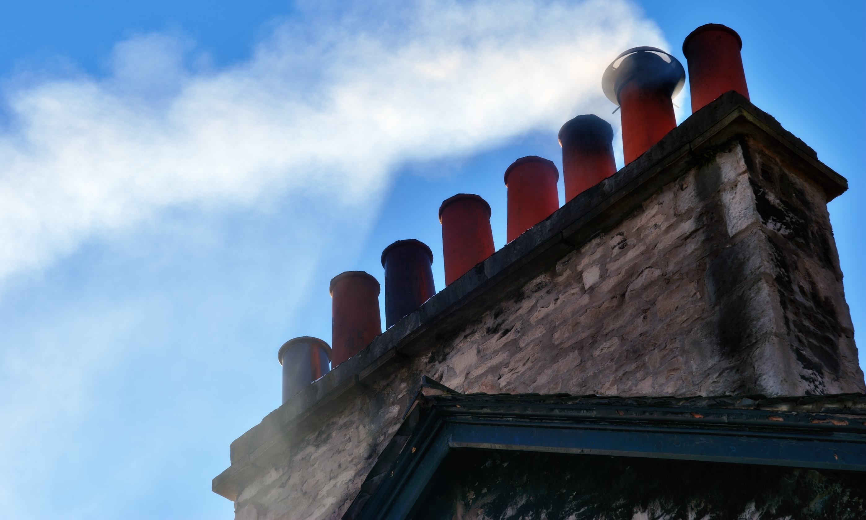 A Day In The Life Of A Local Chimney Sweep Aardvark