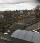 rooftop view 2